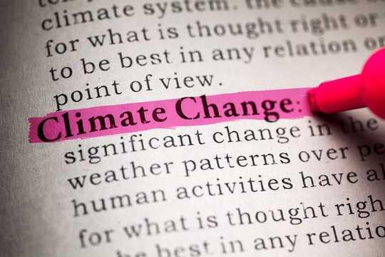 """Margaret Atwood, poète et romancière, a écrit dans un essai de 2015: «Ce n'est pas le changement climatique, c'est tout le changement."""""""