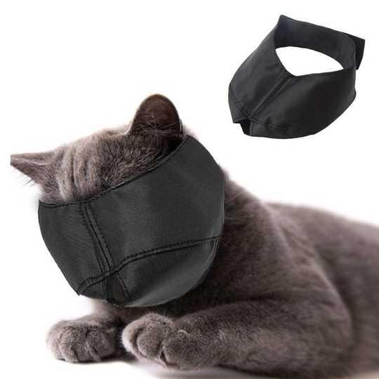 Cat Muzzles são cruéis ou úteis?