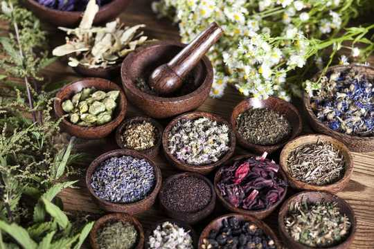 Traditional Medicines Should Be Integrated Into Health Care For Culturally Diverse Groups