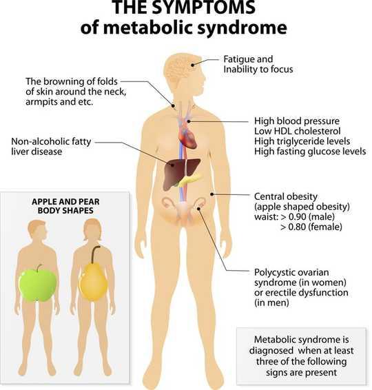 Sınırlı Yeme Süreleri Obezite ve Diyabetle Mücadelede Yeni Bir Yol Olabilir