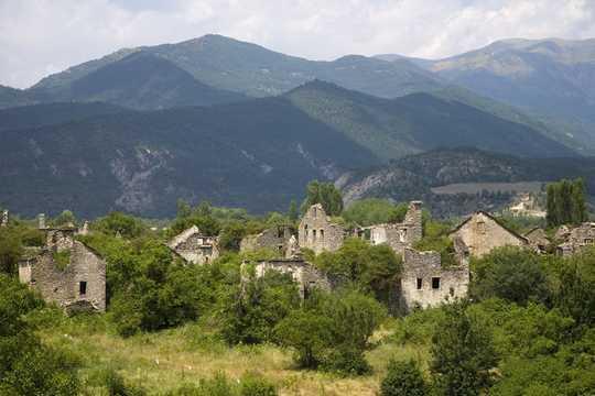 A medida que se abandonan las tierras de cultivo y las aldeas, los bosques, los lobos y los osos regresan a Europa
