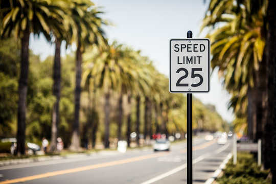 Why There's A Recovery Speed Limit After Mass Extinction