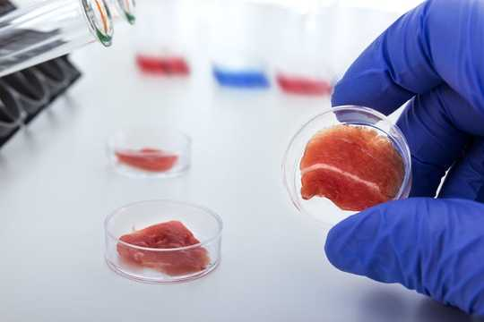 Should Lab-grown Meat Be Labelled As Meat When It's Available For Sale?