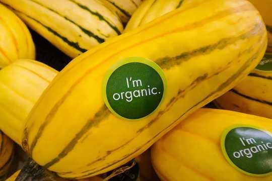 4 maneras de reducir el carbono en su canasta de alimentos