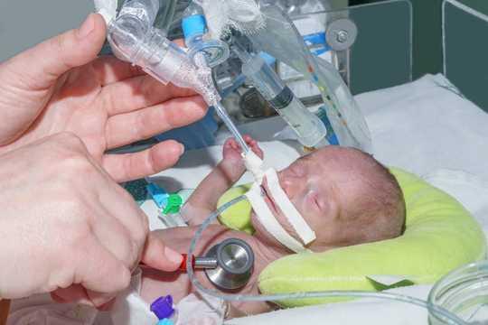Rahim Tidak Steril - Bayi Sihat Dilahirkan Dengan Bakteri dan Kulat Dalam Guts mereka