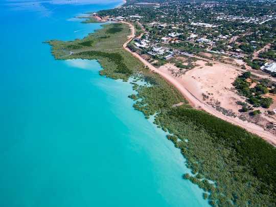 افزایش دریاها به تالابهای ساحلی امکان ذخیره کربن بیشتر را می دهد