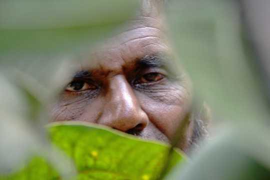 Bu Bangladeşli Adamın Öyküsü, İklim Değişikliğini Çatışmaya Bağlamanın Neden Önemli Değil Olduğunu Gösteriyor