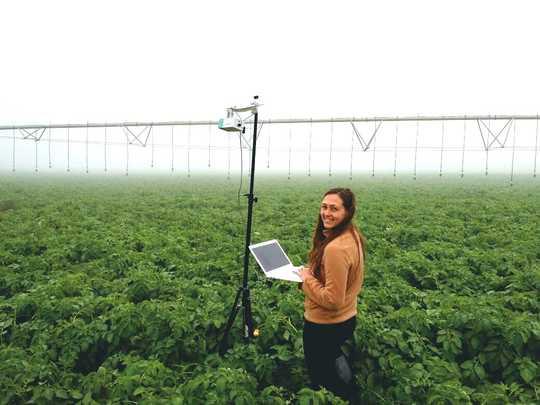Как искусственный интеллект меняет нашу ферму