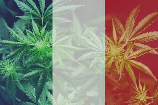 France Forgets Own Golden Age Of Medical Marijuana