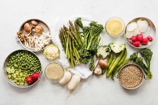 Forvirret om hva du skal spise? Vitenskapen kan hjelpe