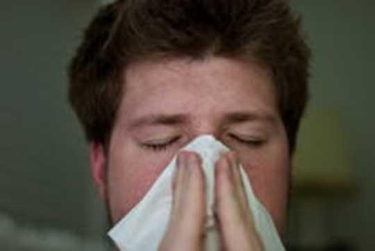 Hur blir vi allergiska mot mat?