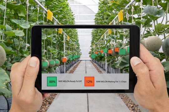 Come la tecnologia sta trasformando l'agricoltura