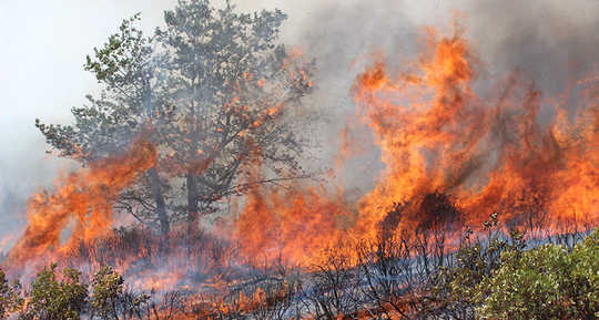Why Wildfire Health Hazards Extend Hundreds Of Miles