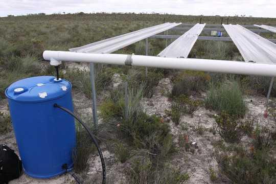 Nous avons construit un réseau de serres et d'abris contre la pluie pour simuler l'impact du changement climatique sur les sols