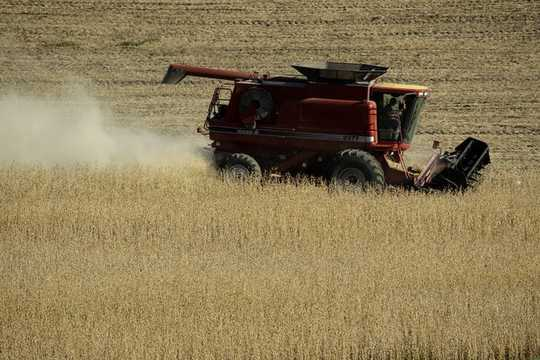 3 Redenen Midwest Farmers Hurt By The Us-China Trade War Ondersteuning nog steeds Trump