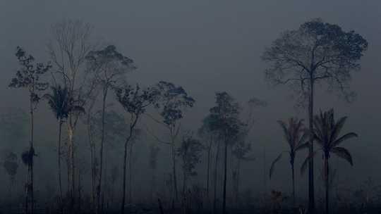 Wanahabari huko Brazil Tazama Unyanyasaji wa Dunia ya Mungu Kama Dhambi - Lakini Je! Watapambana Kuokoa Amazon?