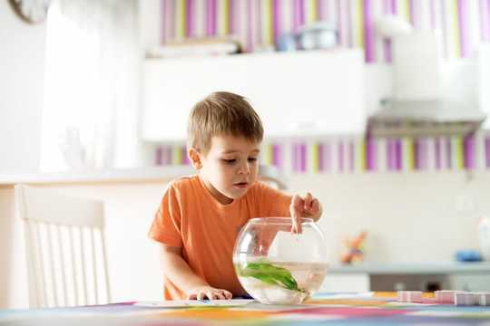 O esquecimento do seu filho em idade pré-escolar não é mau comportamento e incomodá-los não ajudará