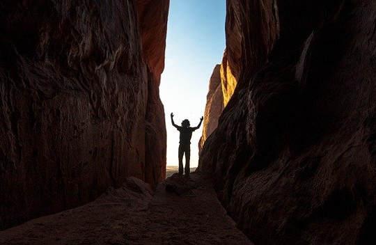 Nuestra elección: vivir del miedo y del cerebro inferior ... o prosperar con el cerebro superior
