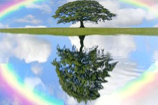 Alterar sua auto-imagem muda o espelho de suas experiências