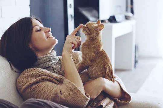 حیوانات اهلی ، حیوانات اهلی و حیوانات وحشی آیا همه می توانند از کورون ویروس استفاده کنند - آیا این امر باعث خطرناک شدن آن می شود؟