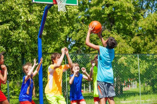 Yapılandırılmış veya rekabetçi sporları oynamak, zindelik seviyelerini mutlaka artırmadı.