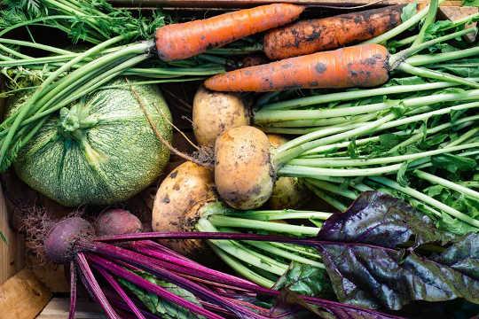 Die Nachfrage nach Saatgut hat zugenommen, da immer mehr Menschen Gärten anbauen. (warum Schulen Outdoor-Bildung annehmen sollten)