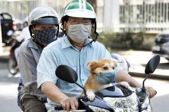 越南第二波的好消息-从火龙果汉堡到自动取款机