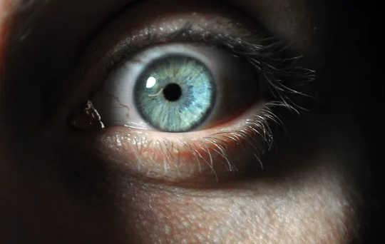 从心理变态者到日常施虐者:人类为何无害?