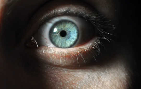 Dari Psikopat hingga Orang Sadis Sehari-hari: Mengapa Manusia Memudaratkan Orang yang Tidak Berbahaya?