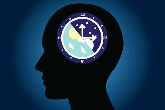 How This Circadian Rhythm Liver Gene Helps The Body Keep Working Smoothly After Late Nights And Midnight Snacks