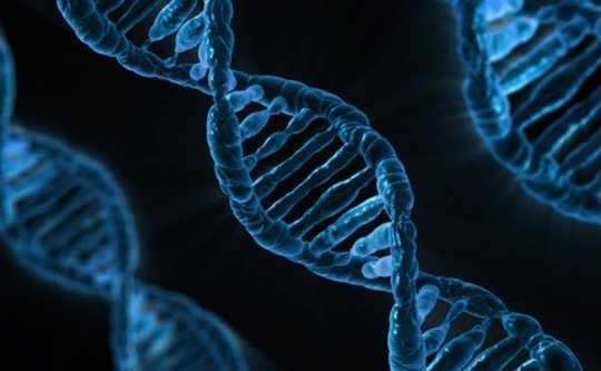 Berapa Banyak Gen Kita Membataskan Kehendak Bebas?