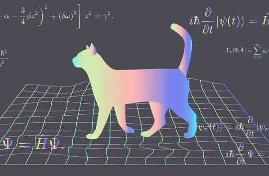 Could Schrödinger's Cat Exist In Real Life?