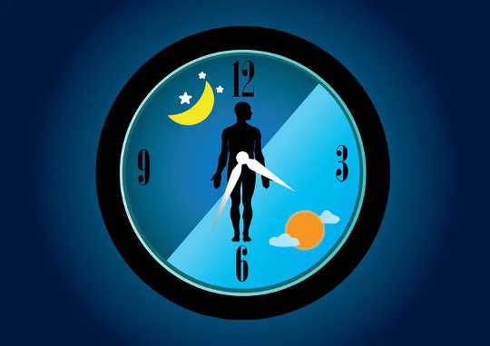 Nossos relógios corporais internos controlam todas as funções do nosso corpo.