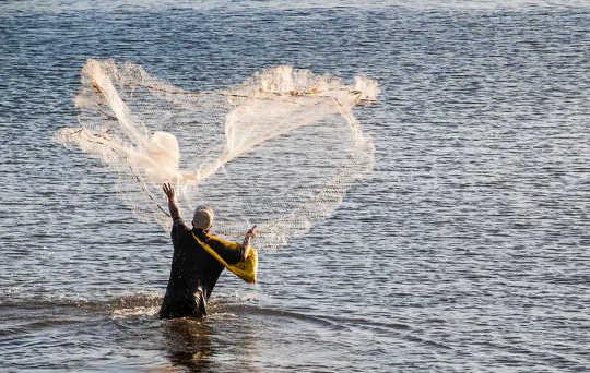 Geleneksel beceriler: Apia, Upolu, Samoa limanında balık tutan bir adam. (geleneksel beceriler, turizmden yoksun pasifik adalarındaki insanların pandemiden kurtulmasına yardımcı olur)