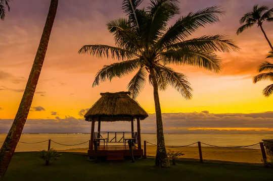 تساعد المهارات التقليدية الأشخاص في جزر المحيط الهادئ المحرومة من السياحة على النجاة من الوباء
