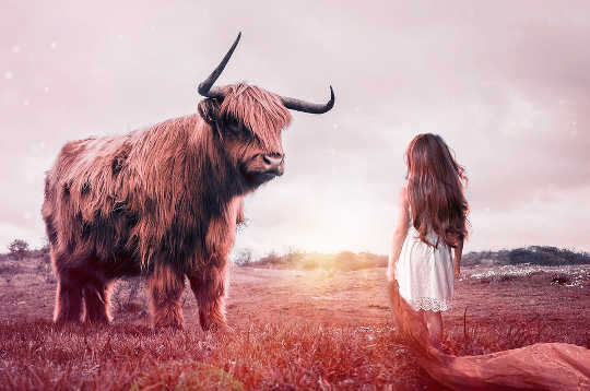 In aanraking kom en vriende te word met, vrees