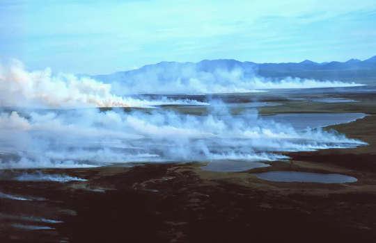 Karbon bakımından zengin turba kolayca yanar ve yıldırımın neden olduğu yangınlar için iyi bir yakıt yapar. (kuzeyin iklim değişikliği trifecta ısı dalgaları orman yangını permafrost çözülüyor)