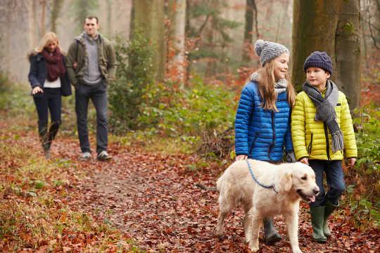 Praticar exercícios na natureza é benéfico para a saúde mental.
