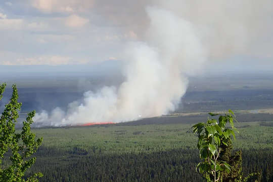 Ang North's Climate Change Trifecta: Heat Waves, Wildfire at Permafrost Thaw