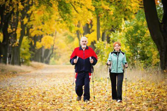 3 formas en que la actividad física cambia la estructura misma del cerebro
