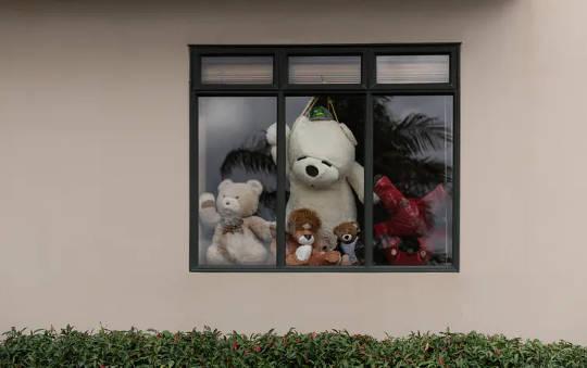 Yeni Zelanda'nın tecrit edilmesi sırasında insanlar, çocukları yürüyüşe çıkmaya teşvik etmek için pencerelere teddies koydu.