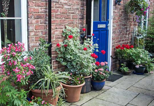 تقلل حدائق الواجهة الخضراء من الإجهاد الفسيولوجي والنفسي