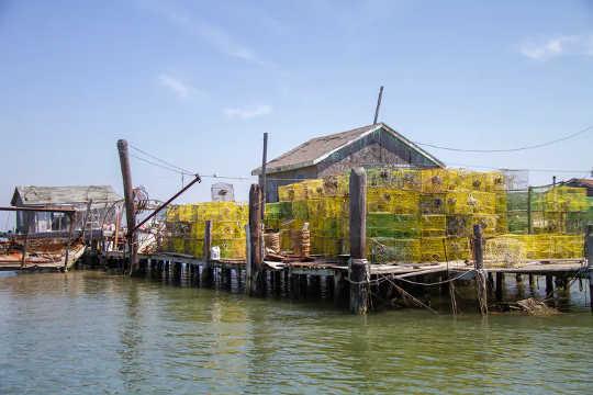Pot kepiting di dermaga di Chesapeake Bay, Va. (Cara meninggalkan alat tangkap hantu yang tersesat dan dibuang dari laut)