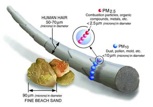 Partikel PM2.5 berukuran kecil dengan diameter kurang dari 2.5 mikron.