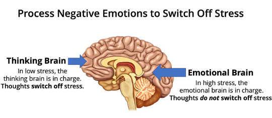Pensée vs émotion dans le cerveau. (Comment déjouer vos craintes de Covid 19 et booster votre humeur en 2021)