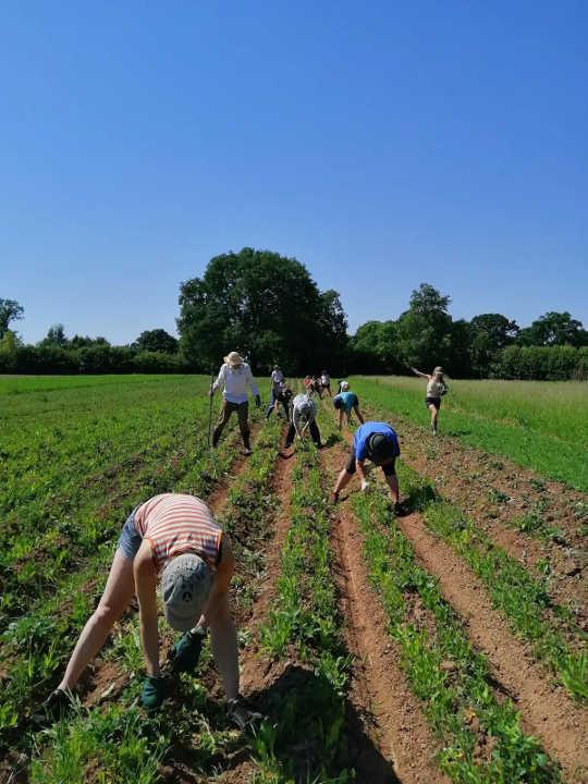 Ang Mga Komunidad na Ito ay Naranasan sa Pag-greener At Patas na Mga Paraan ng Pamumuhay
