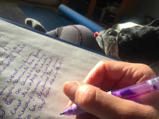 Seseorang membuat catatan dengan kepala anjingnya bertumpu pada pangkuannya.