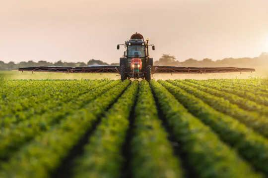 Traktor sprayar bekämpningsmedel på sojabönfält.