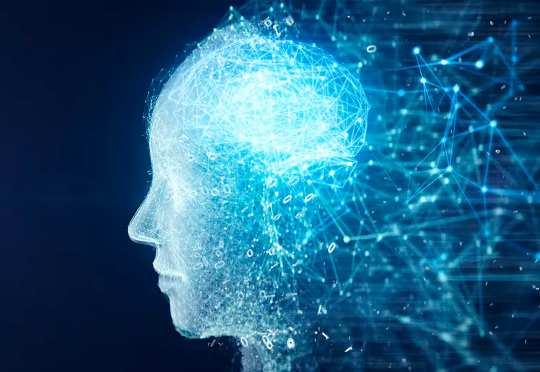 Làm thế nào bộ não phức tạp hơn những gì đề nghị giải phẫu