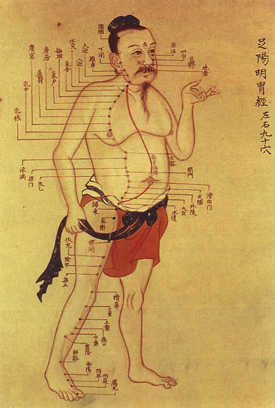 Illustration de la médecine traditionnelle chinoise. Wikimedia Commons
